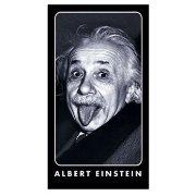 アインシュタインのやる気スイッチが入る言葉