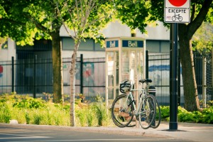 bell-bike-bikes-4506-825x550